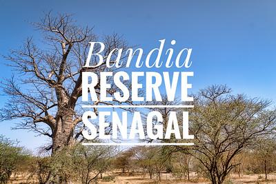 Bandia Reserve