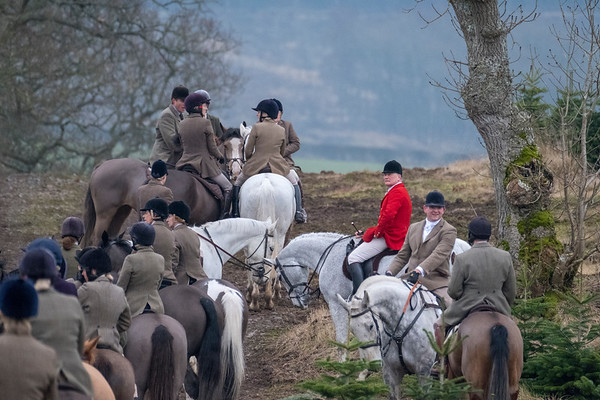 Buccleuch Foxhounds at Rawflat, near Ancrum
