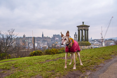 A day in Edinburgh - 13/01/2018