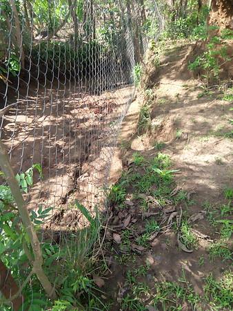 Hadassah School Fence