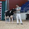 AADS18-Holstein-8392