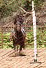 Ant18_D2_LAPB- 0051