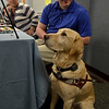 MET 041318 SERVICE DOGS 01PRICE