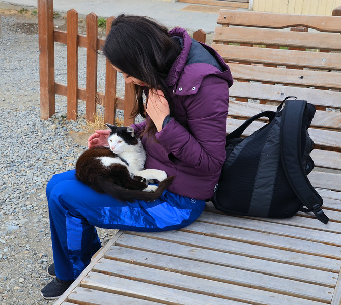 Cat snuggles with one of our fellow travelers at Parador La Leóna