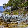 Hiking in Parque Nacional Tierra del Fuego