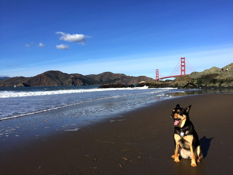 <b>Baker Beach</b> <br>San Francisco, CA <br>December 2, 2018