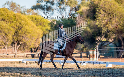 Dressage up to 12pm