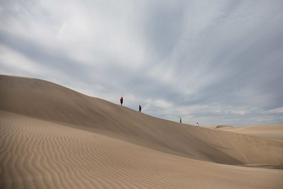 A walk amongst the dunes