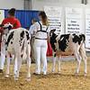 BigE18_Holstein-3965