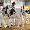 BigE18_Holstein-3962