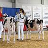 BigE18_Holstein-3964
