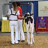 BigE18_Holstein-3968