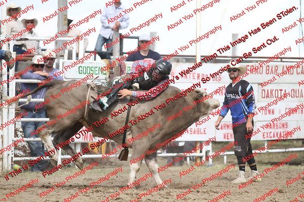 BLY18_Bulls- 0123