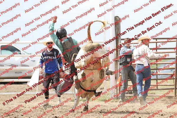 BLY18_Bulls- 0068