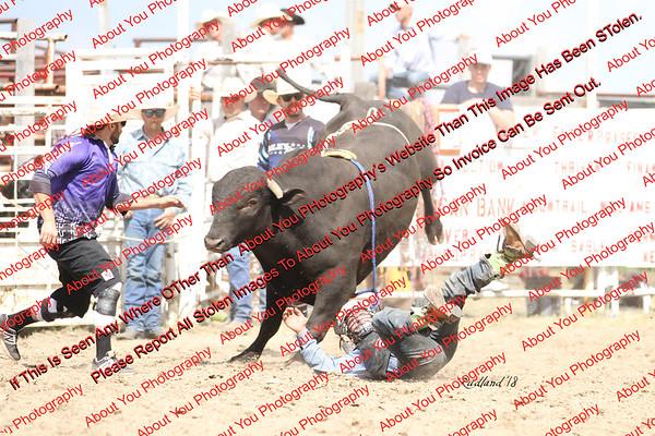 BLY18_Bulls- 0015