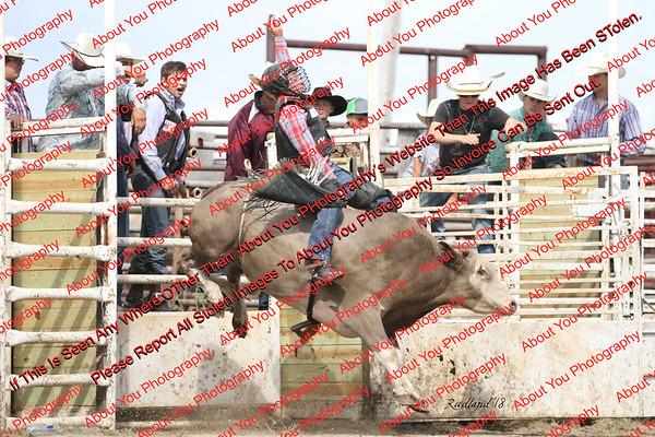 BLY18_Bulls- 0102