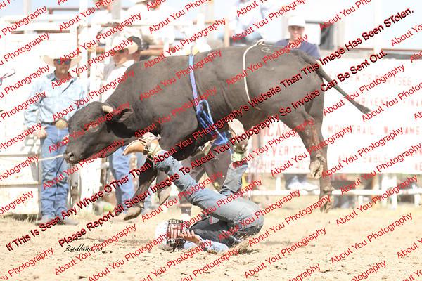 BLY18_Bulls- 0013