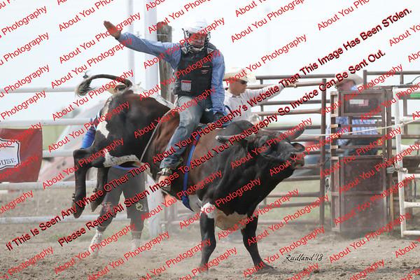 BLY18_Bulls- 0136