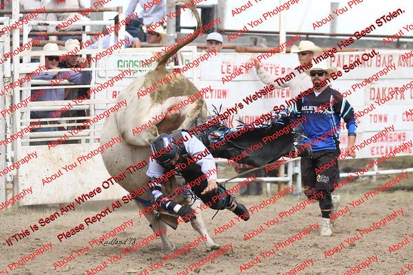 BLY18_Bulls- 0087