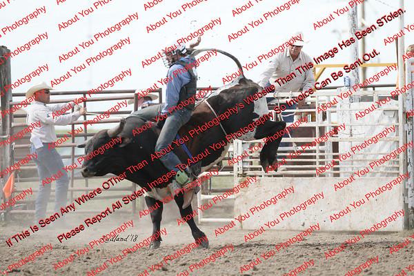 BLY18_Bulls- 0135
