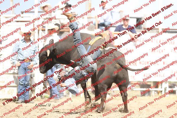 BLY18_Bulls- 0012