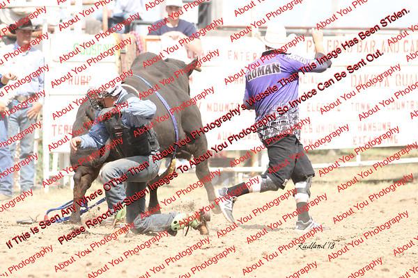 BLY18_Bulls- 0018