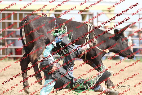BLY18_Bulls- 0035