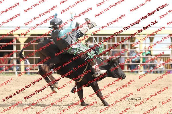 BLY18_Bulls- 0034