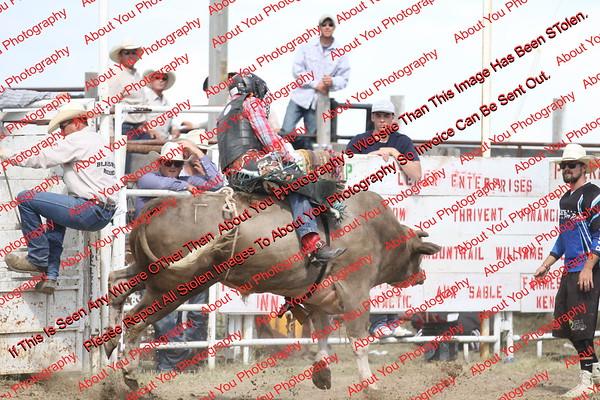 BLY18_Bulls- 0117
