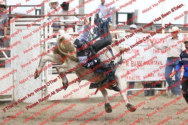BLY18_Bulls- 0086