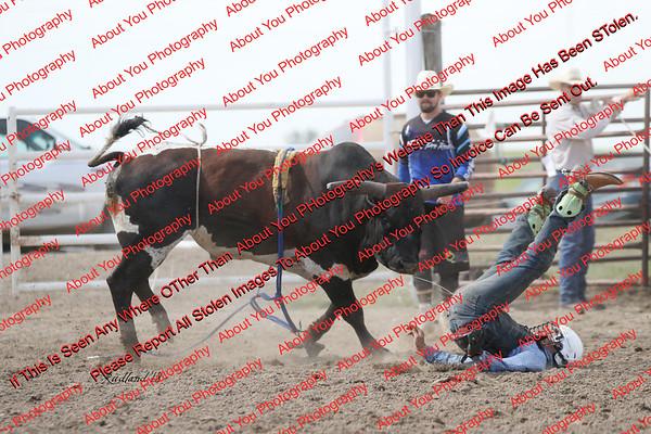 BLY18_Bulls- 0140