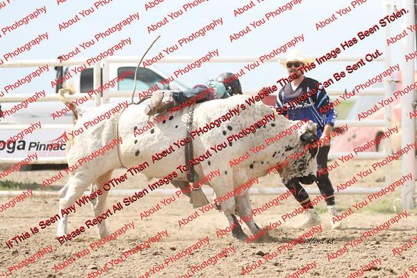 BLY18_Bulls- 0071