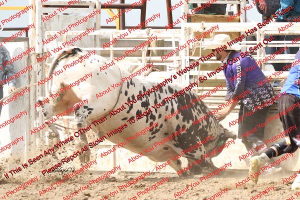 BLY18_Bulls- 0049