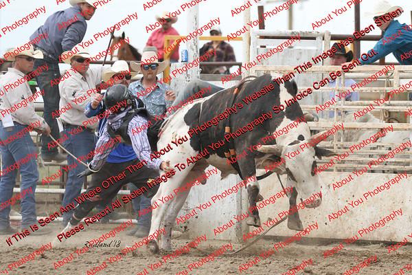 BLY18_Bulls- 0059