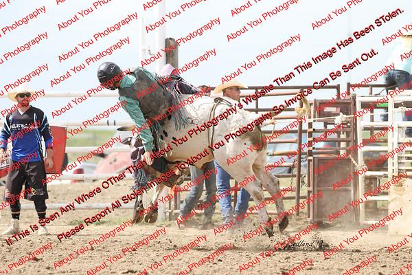 BLY18_Bulls- 0067