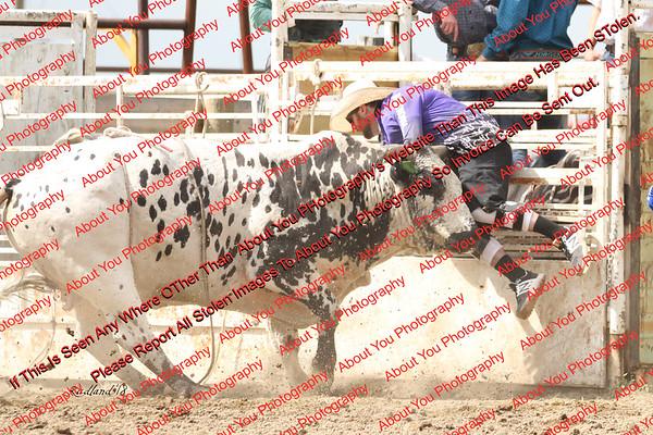 BLY18_Bulls- 0051
