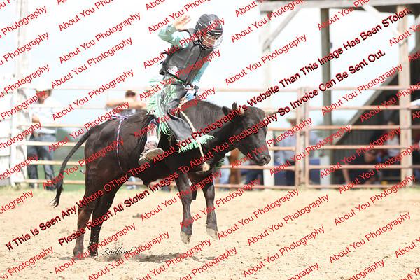 BLY18_Bulls- 0025