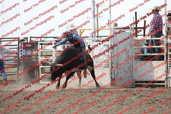 BLY18_Bulls- 0132
