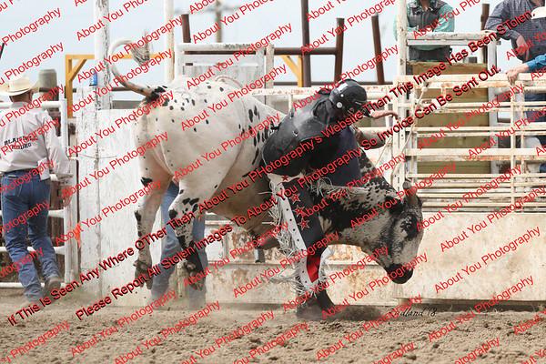BLY18_Bulls- 0044