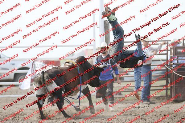 BLY18_Bulls- 0139