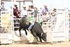 BLY18_Bulls- 0091