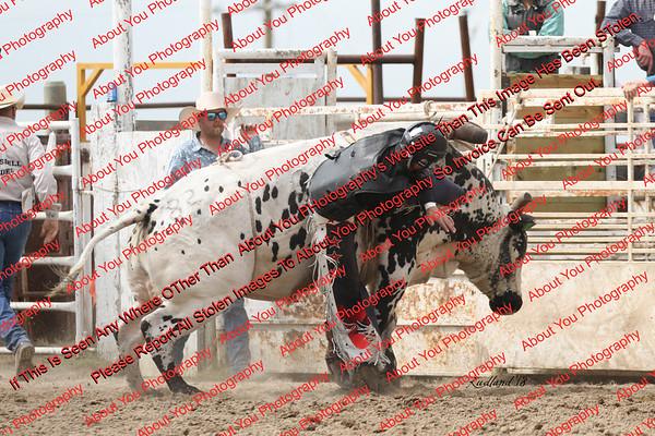 BLY18_Bulls- 0045