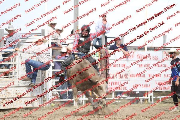 BLY18_Bulls- 0114