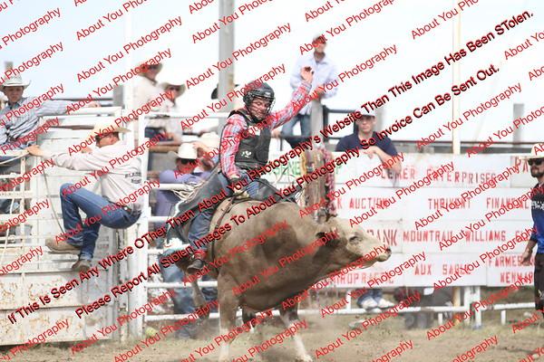BLY18_Bulls- 0115