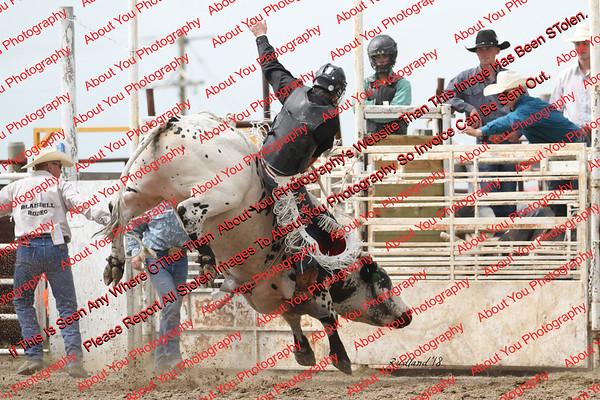 BLY18_Bulls- 0043