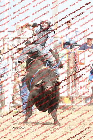 BLY18_Bulls- 0009