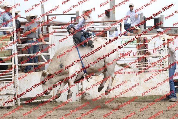 BLY18_Bulls- 0079