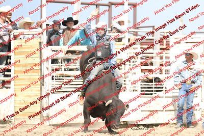 BLY18_Bulls- 0005