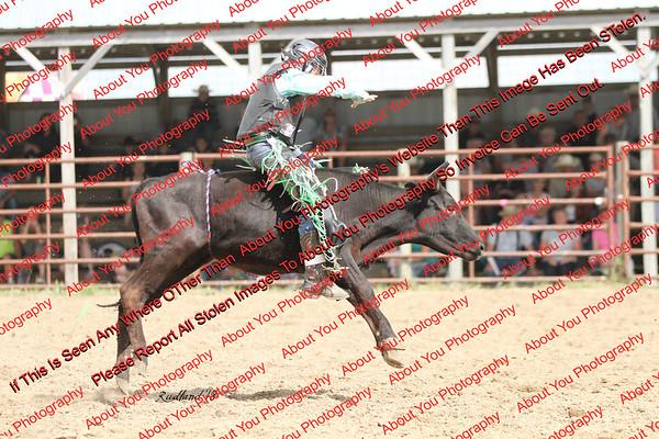 BLY18_Bulls- 0030