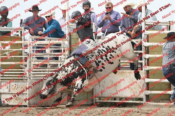 BLY18_Bulls- 0039